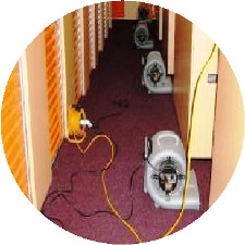 Carpet Cleaning Carpet Drying